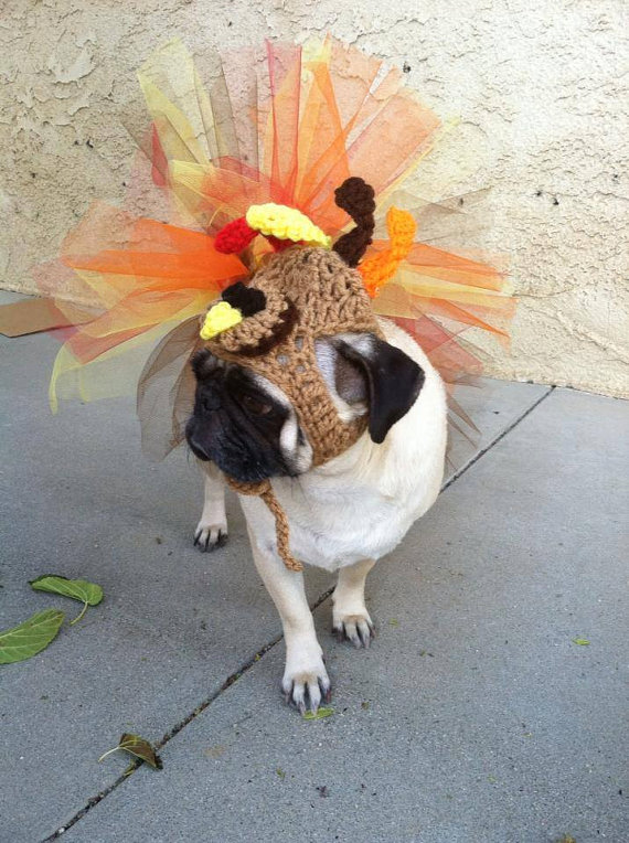 thanksgiving pug the dog blog etsy shopping for your pup the rusted key 331